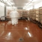 Afløbssystemer har stor betydning for fødevaresikkerheden