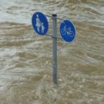 Lad os lære af udlandet og stormflodssikre nu